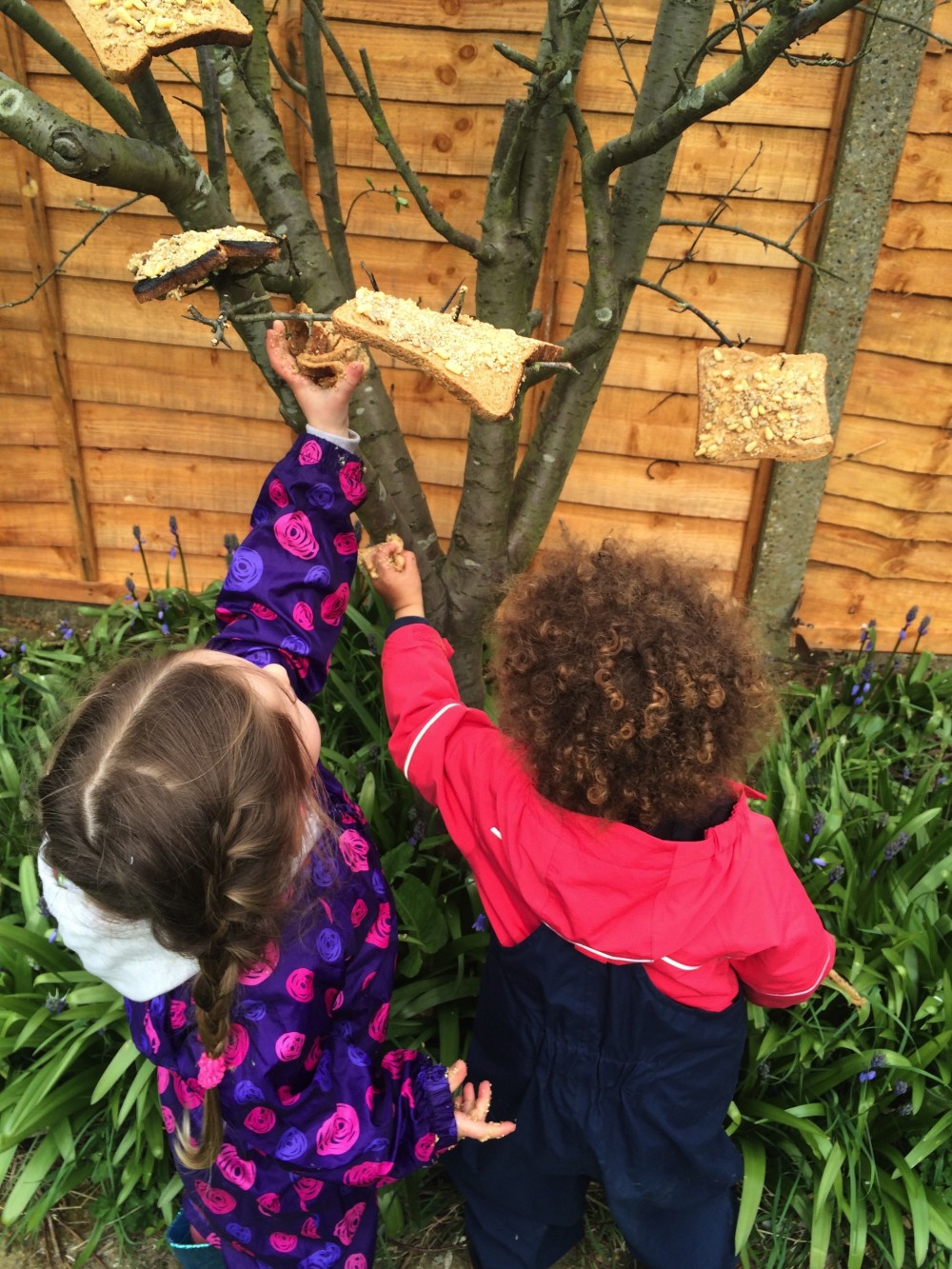 Making bird feeders
